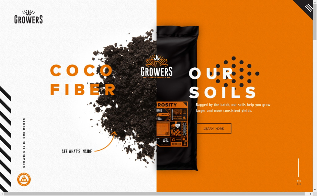 11 Beautifully Designed Black and Orange Websites 17