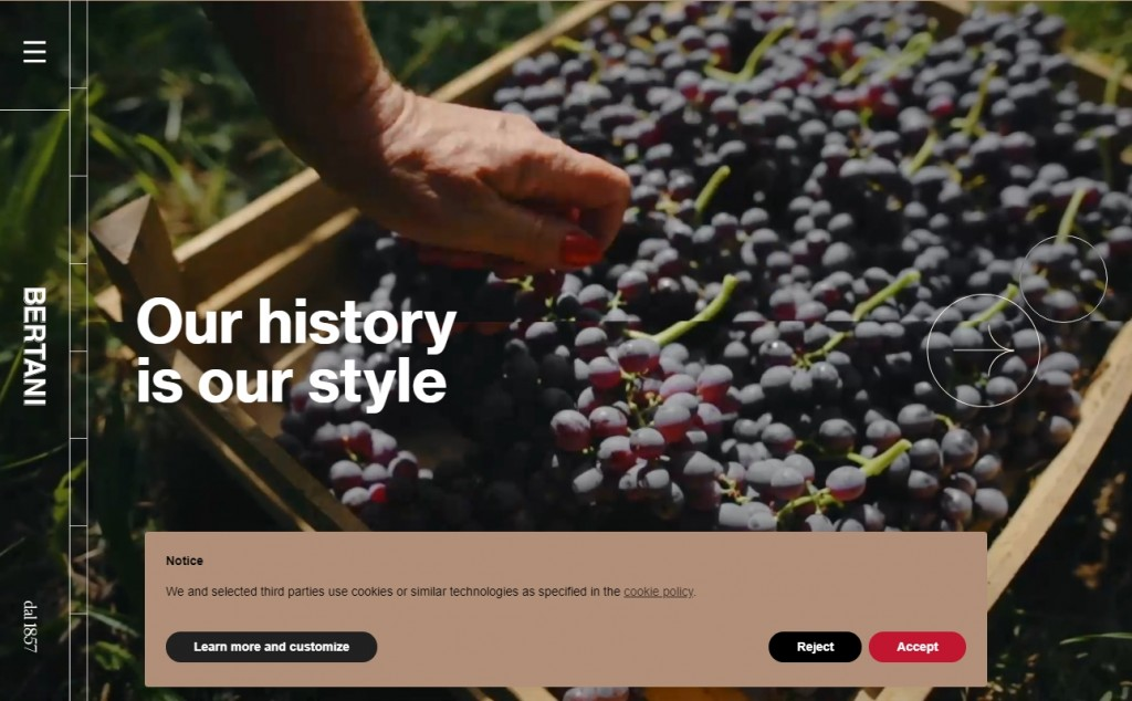 Beige Web Page Designs To Inspire You 23