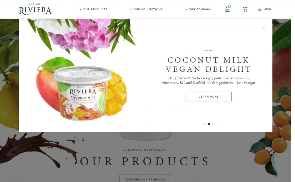Beautifully Designed Light Websites 28