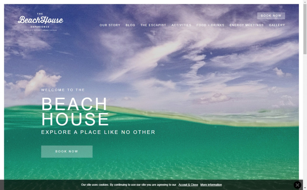 Lime Web Page Design Inspirations 25