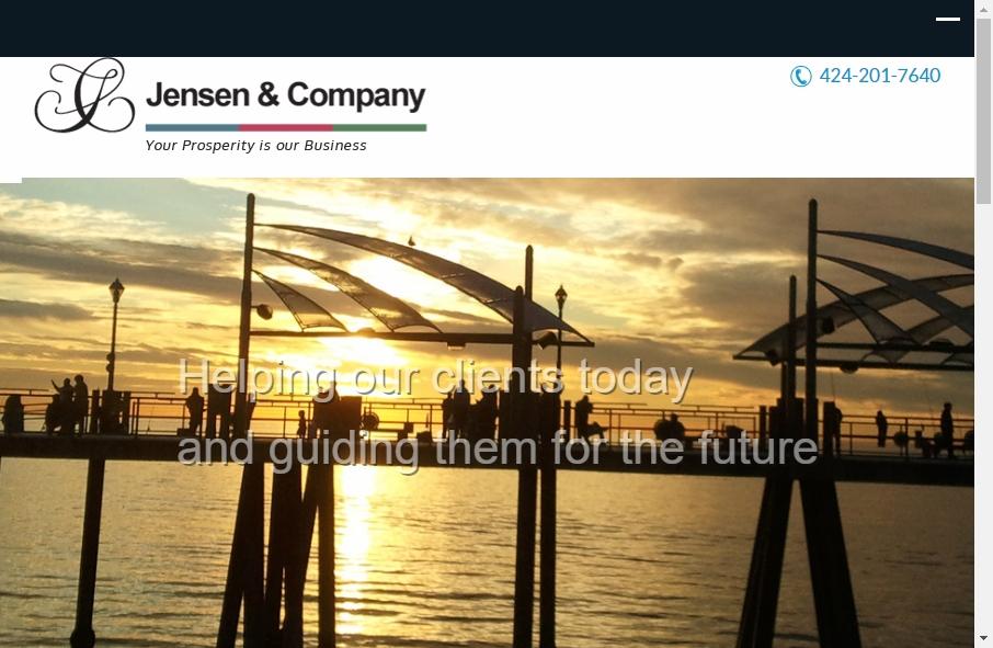 Accountants Websites Examples 17