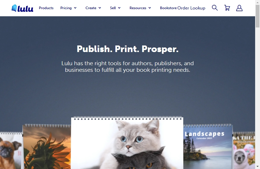 13 Great Publishing Website Examples 17