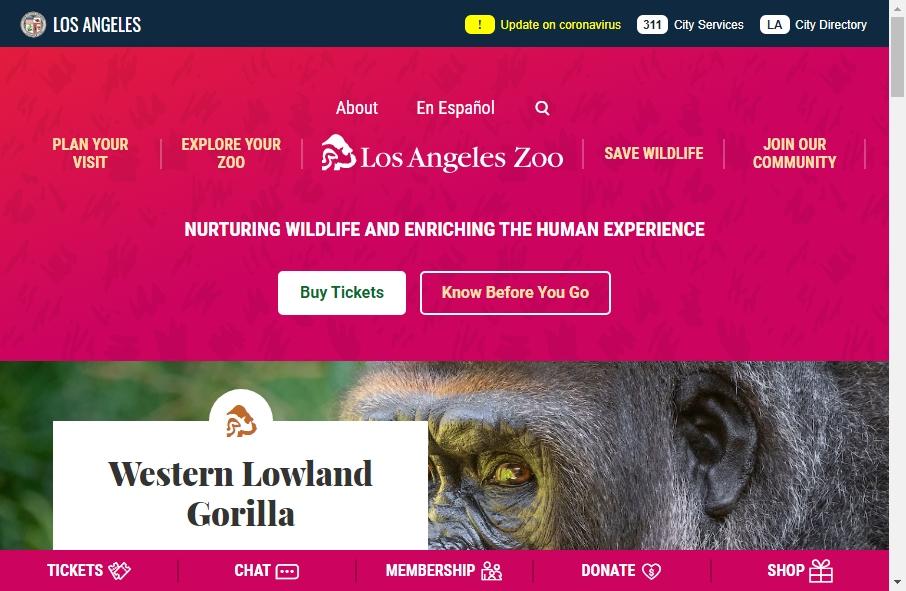 Zoo Websites Design 17