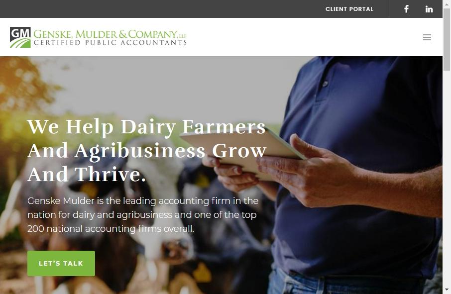 Accountants Websites Examples 18