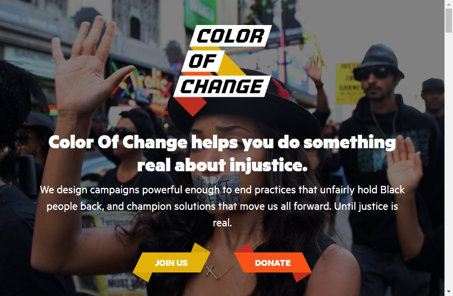 9 Examples of Non Profit Websites With Fantastic Designs 18