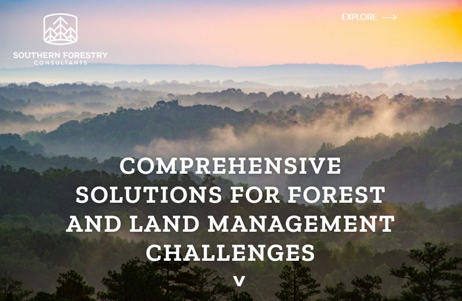 12 Forestry Website Examples to Inspire Your Site 24