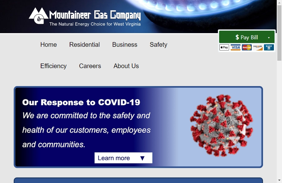Gas Websites Examples 22