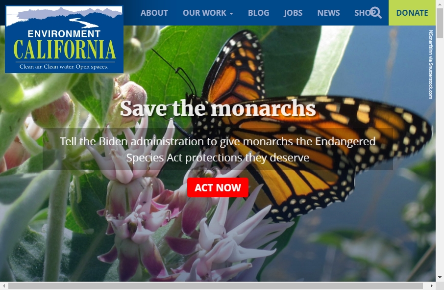 13 Examples of Environment Websites With Fantastic Designs 27