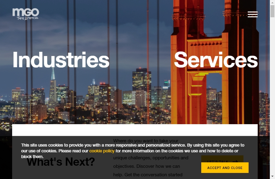 Accountants Websites Examples 28