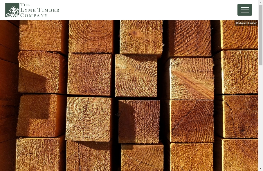 12 Forestry Website Examples to Inspire Your Site 25
