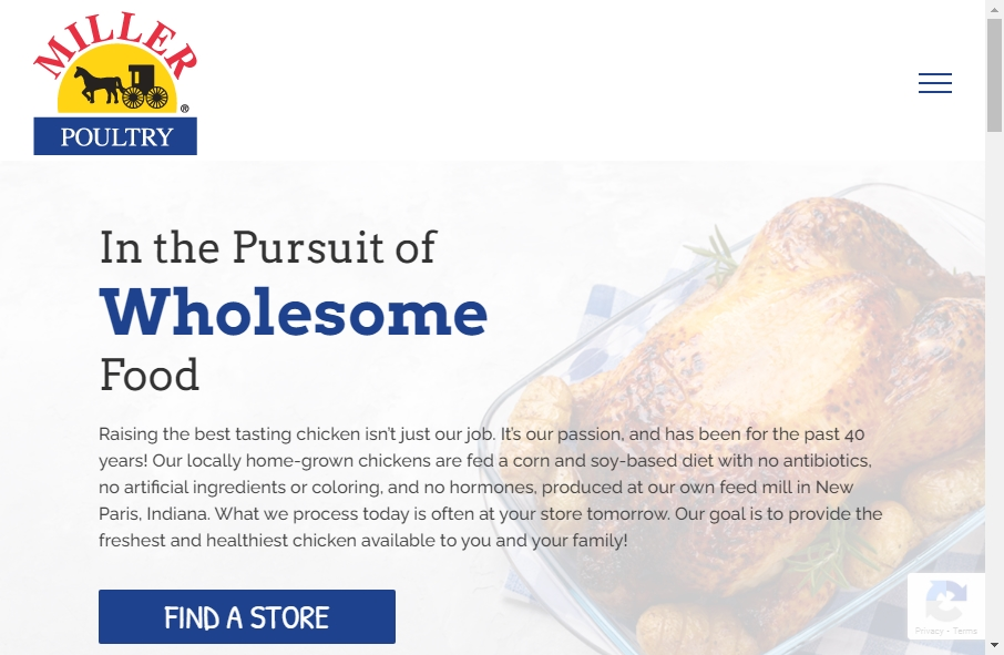 Examples of Poultry Websites With Fantastic Designs 26
