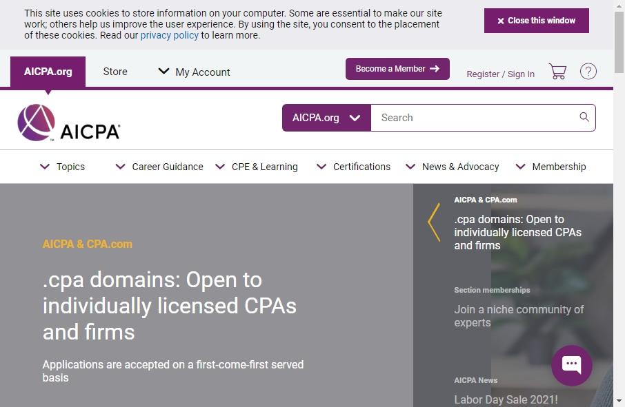 Accountants Websites Examples 29