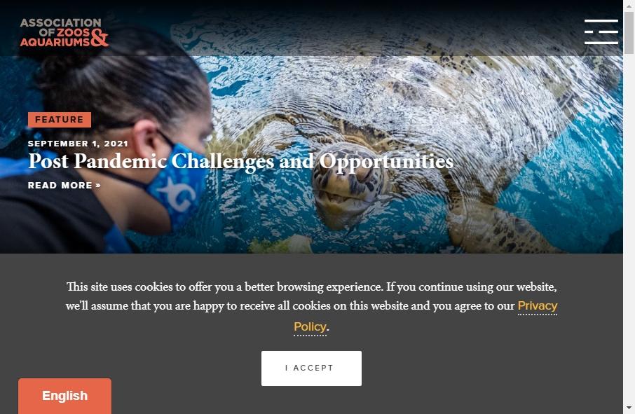 Zoo Websites Design 28