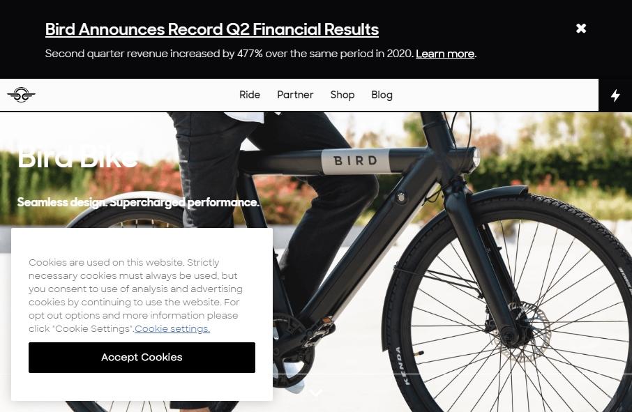 Rental Website Designs 27