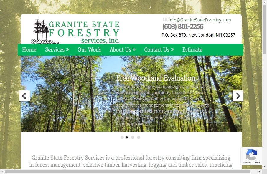 12 Forestry Website Examples to Inspire Your Site 27