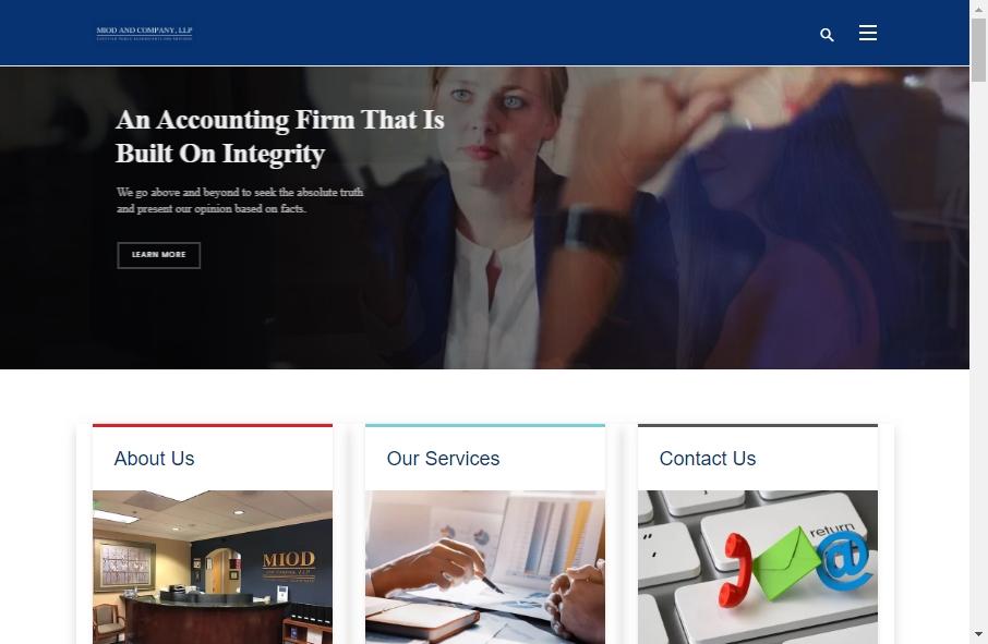 Accountants Websites Examples 30