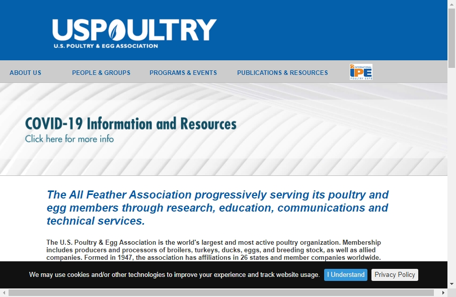 Examples of Poultry Websites With Fantastic Designs 29