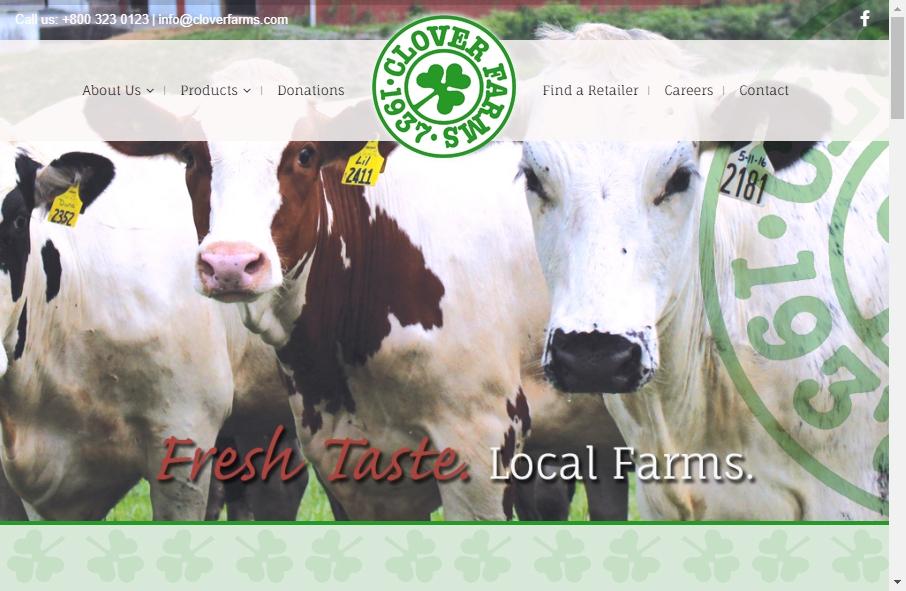 Dairy Website Design 32