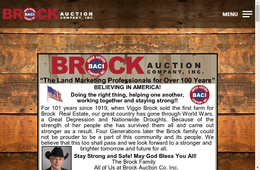 14 Great Auction Websites Examples 29
