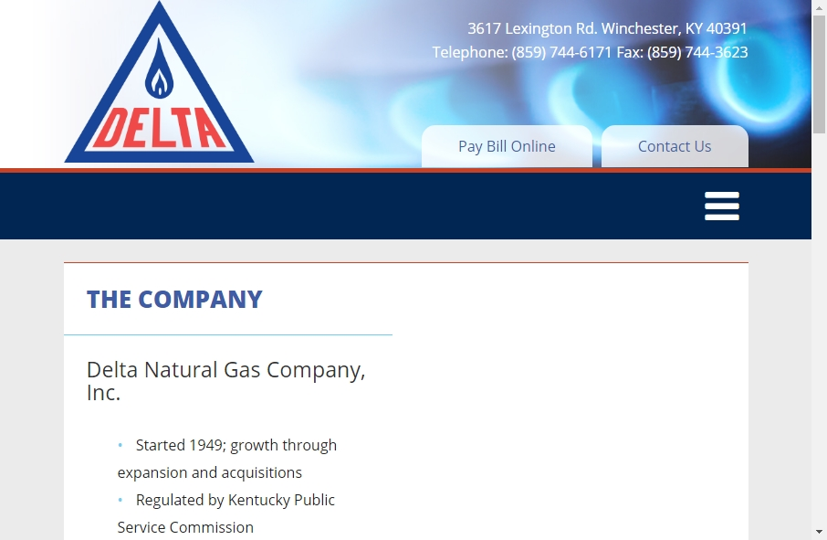 Gas Websites Examples 27