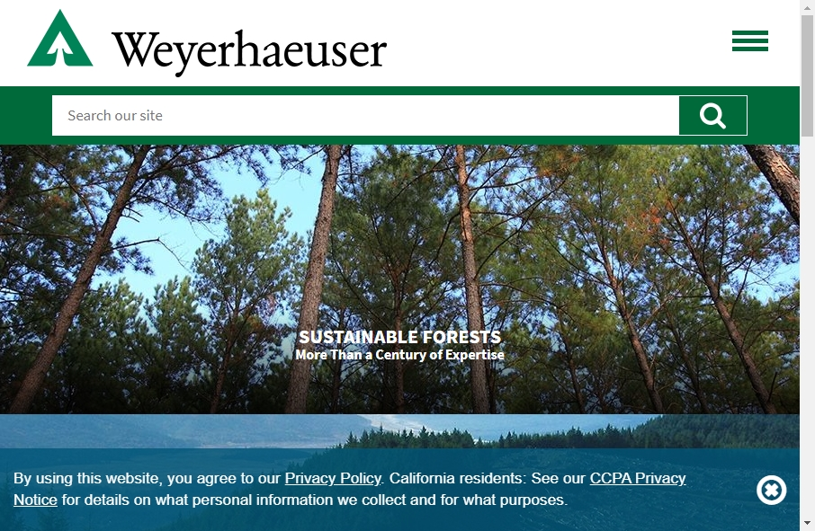 12 Forestry Website Examples to Inspire Your Site 19