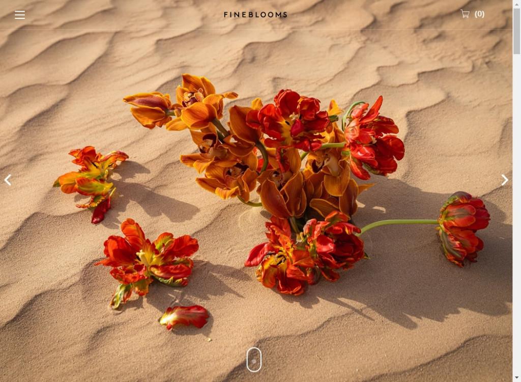 Big Photo Web Designs To Inspire You 19