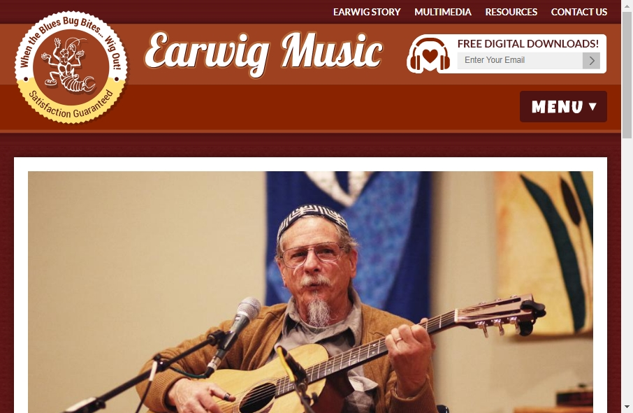 16 Great Music Website Examples 31