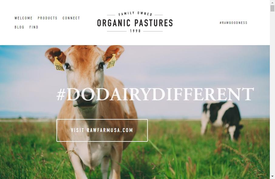 Dairy Website Design 20