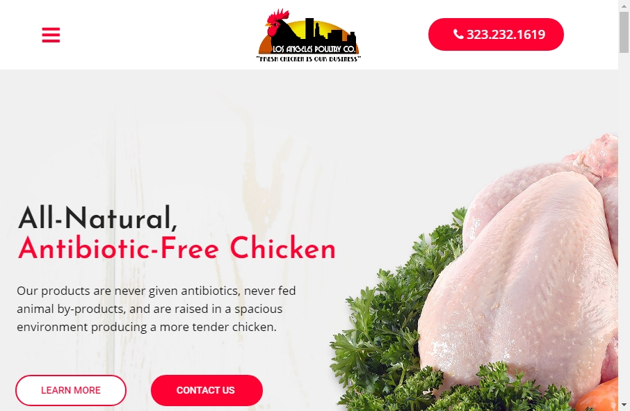 Examples of Poultry Websites With Fantastic Designs 20