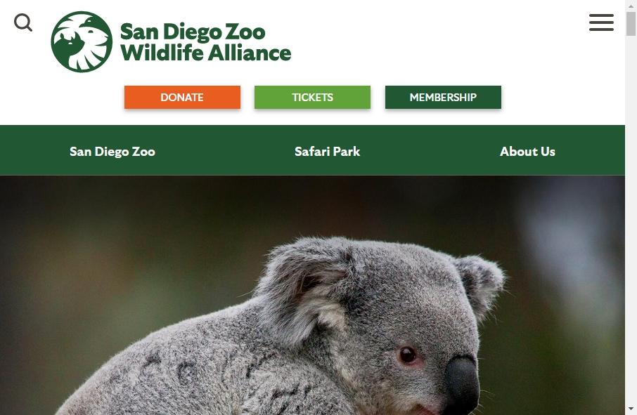 Zoo Websites Design 20