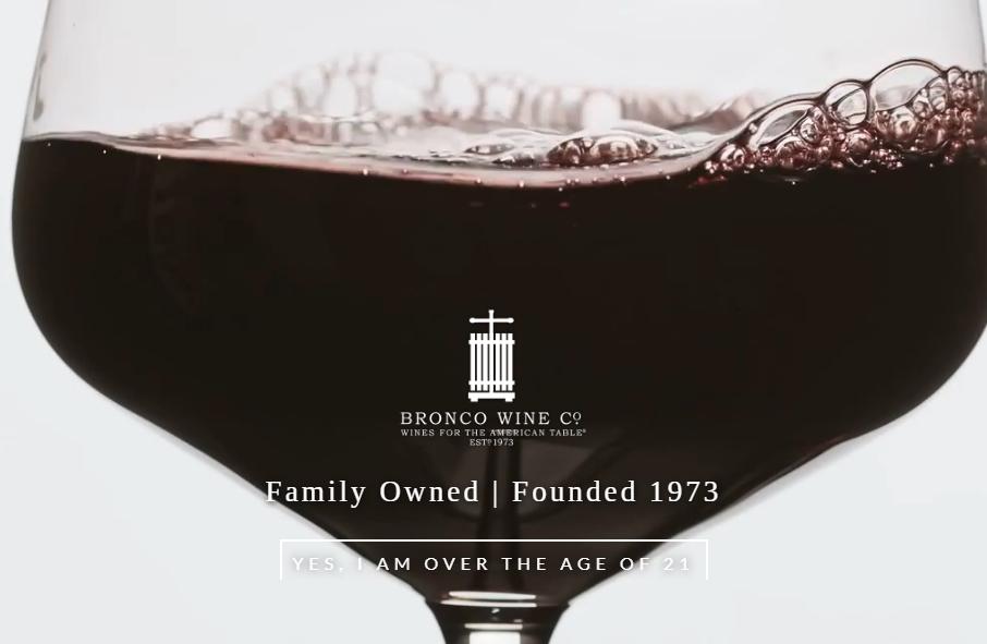 16 Best Wine Website Design Examples for 2021 19