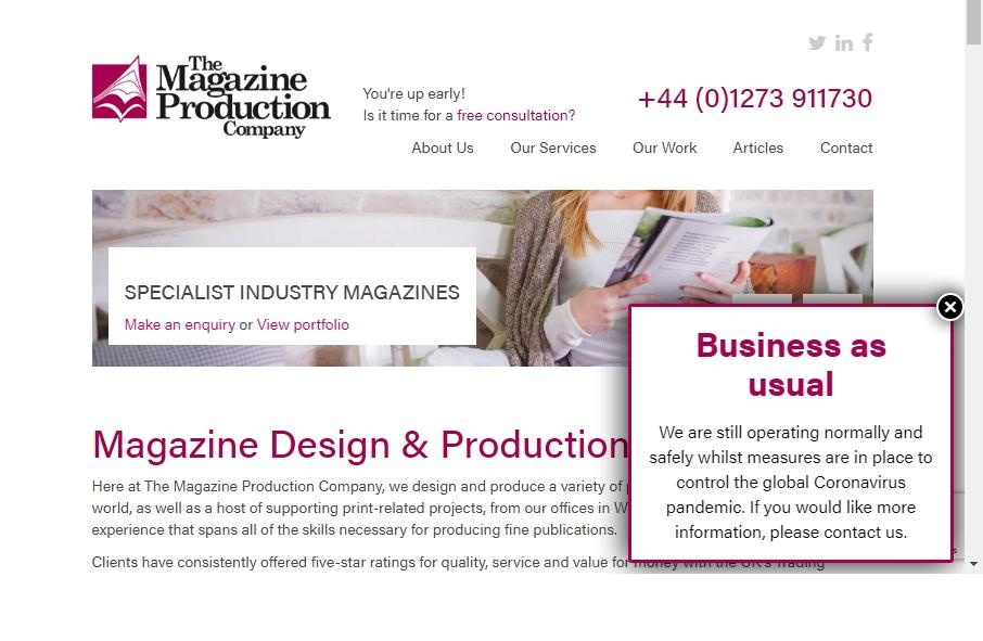 Magazine Website Design 21