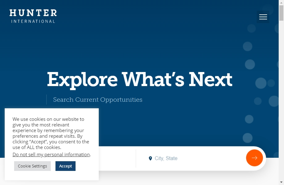 Hunter Websites Examples 21