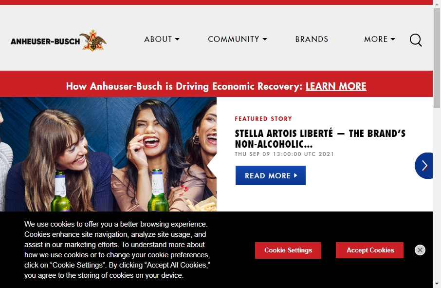 15 Beer Websites Examples to Inspire Your Site 20