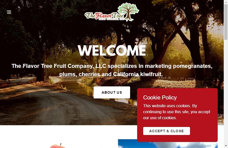 11 Examples of Inspirational Fruit Websites 22