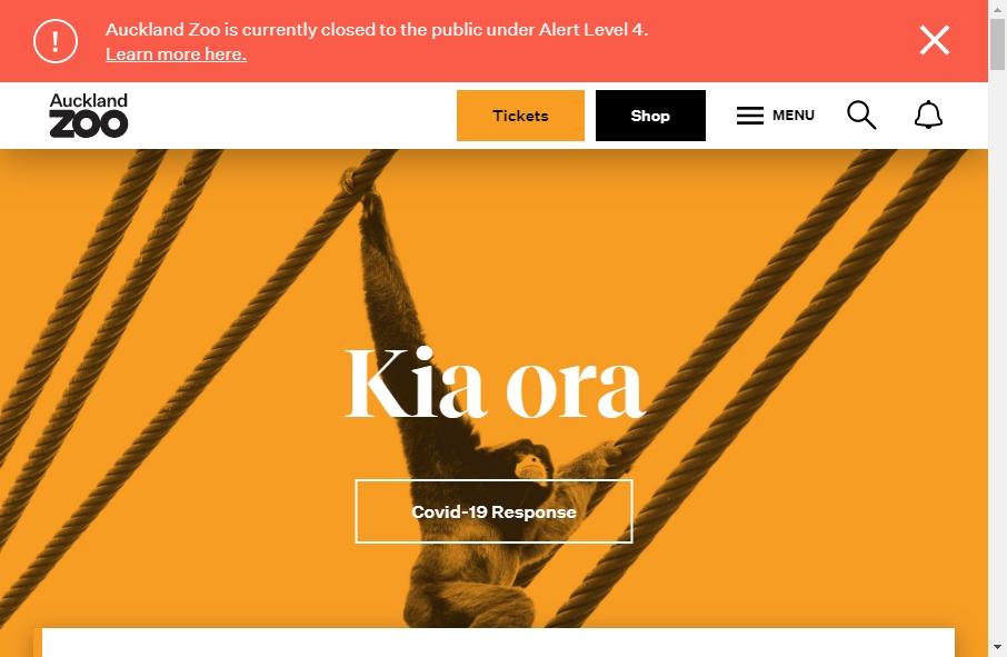Zoo Websites Design 22