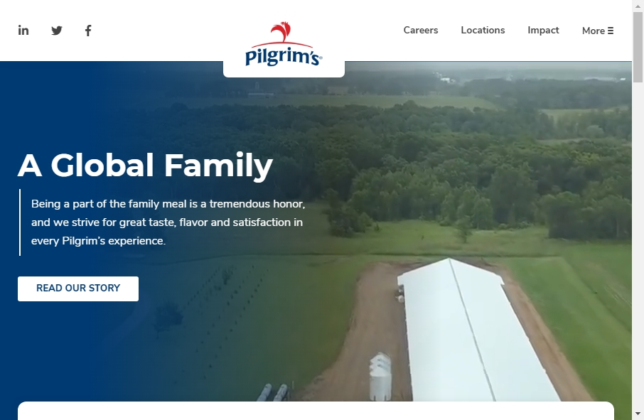 Examples of Poultry Websites With Fantastic Designs 23