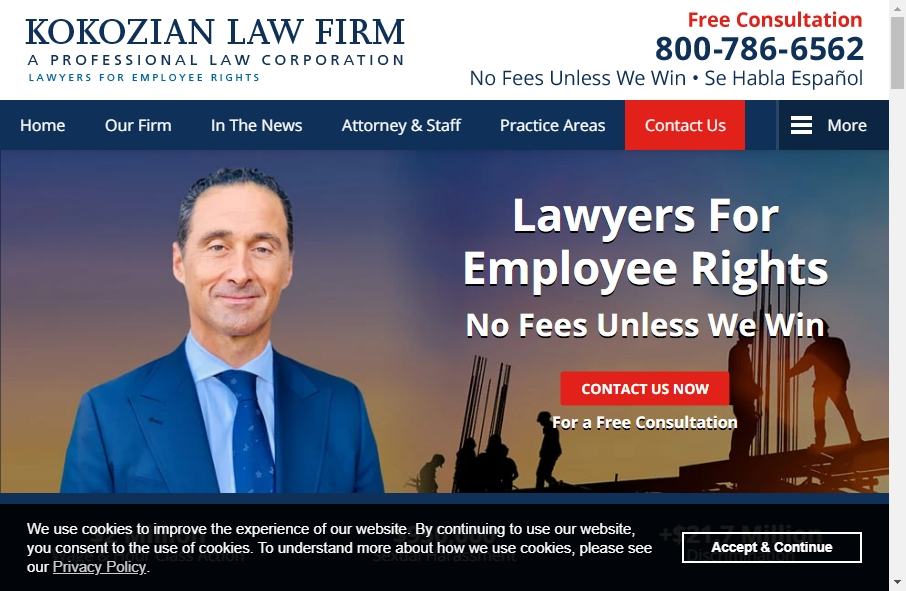 16 Great Lawyer Website Examples 23