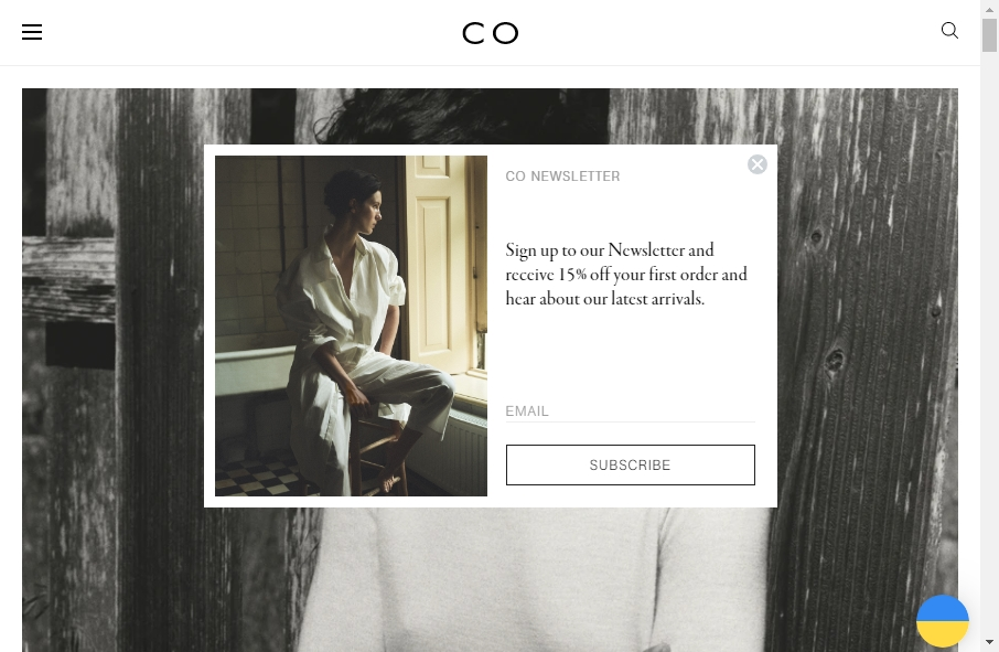 11 Fashion Website Examples to Inspire Your Site 22