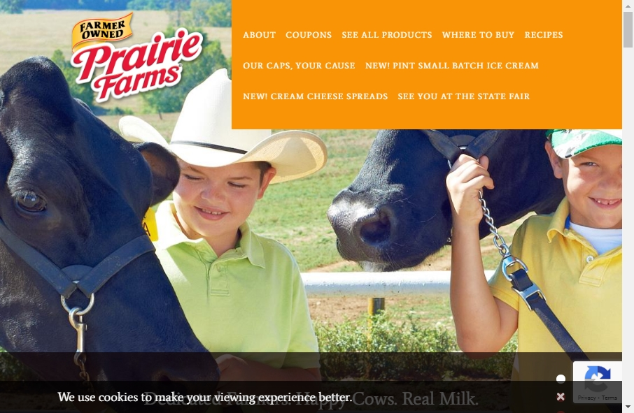 Dairy Website Design 25