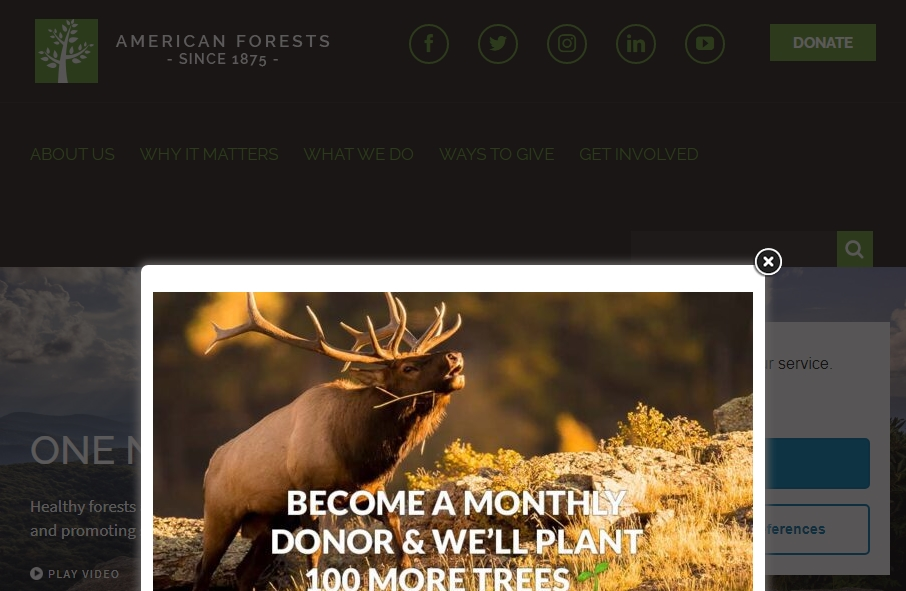 12 Forestry Website Examples to Inspire Your Site 23