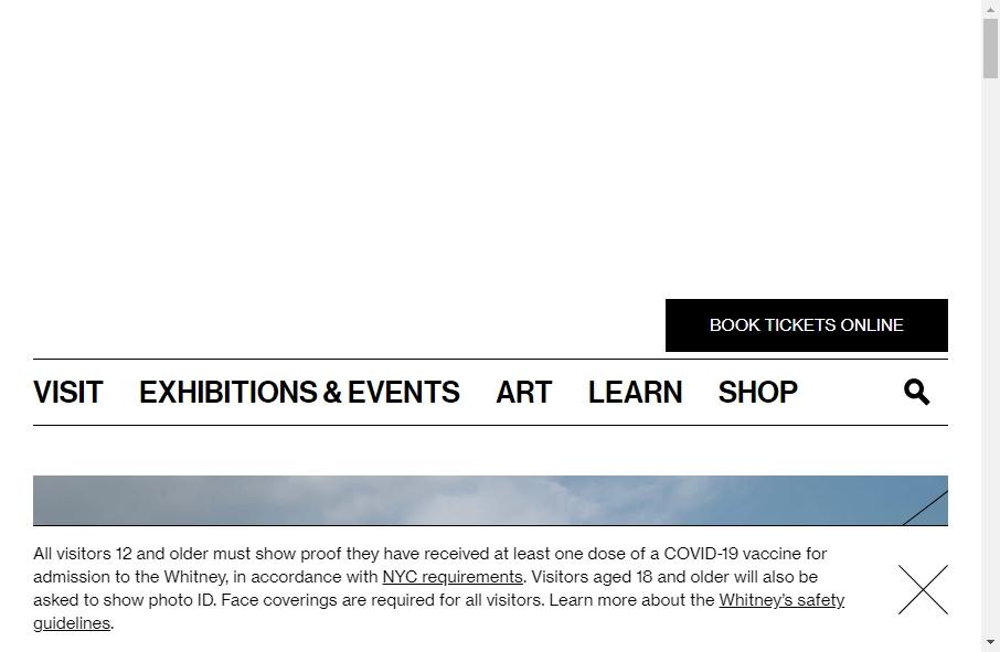 14 Amazing Museum Website Design Examples in 2021 25