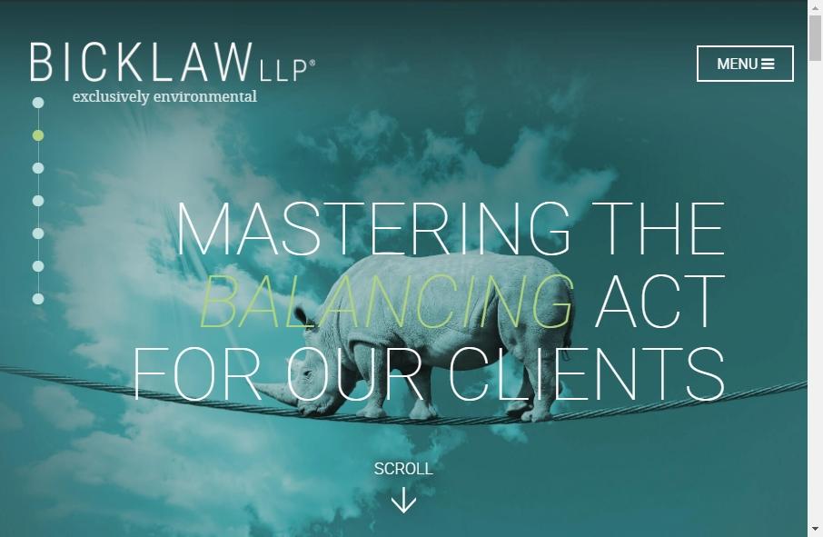Advocate Websites Examples 24