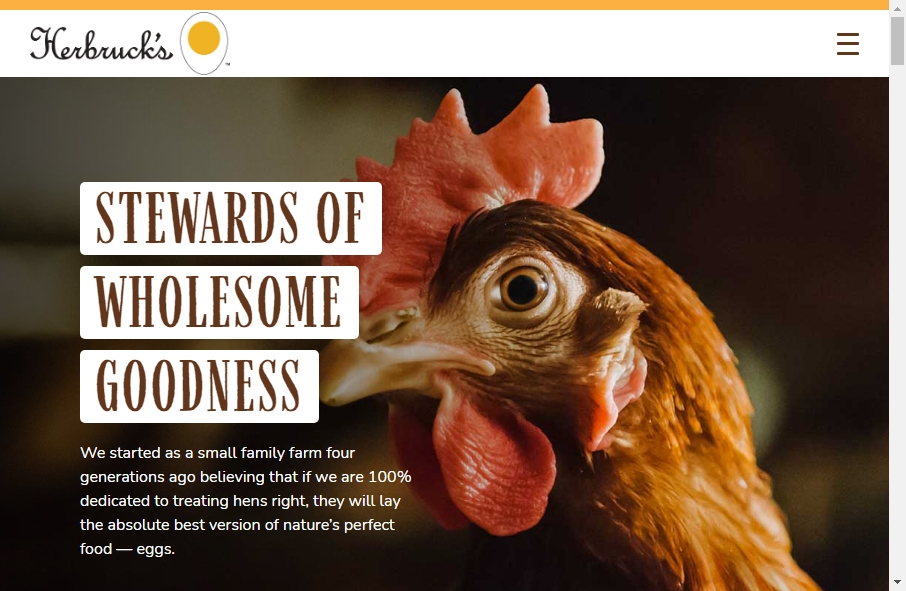 Examples of Poultry Websites With Fantastic Designs 24