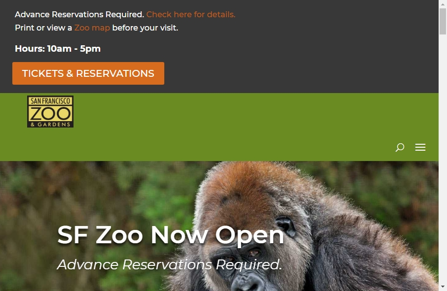 Zoo Websites Design 25