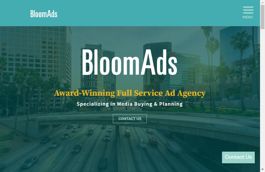 Advertising Websites Examples 25